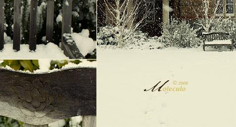 أنا و الكرسي.. و الثلج!